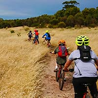a line of mountain bikers on single track at Craigburn Farm