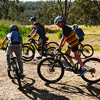 A group of young mountain bikers during a school incursion